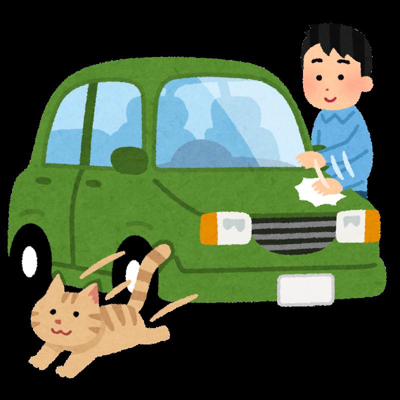 car-banban